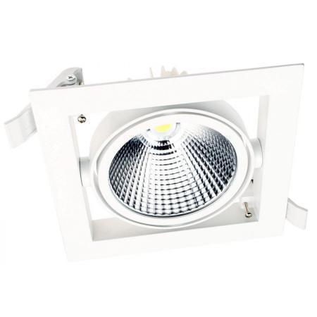 LED DL30 30W WH 5700K