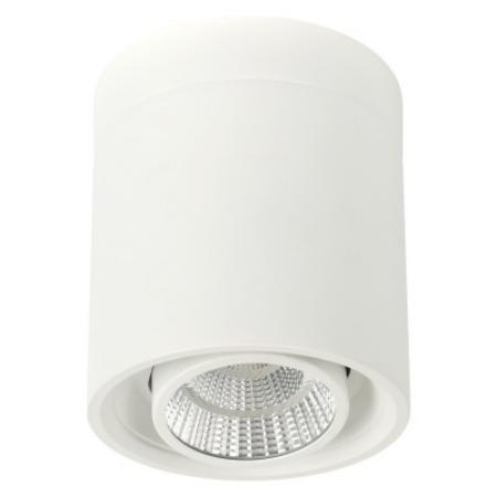 LED COB RD012 20W 4000K WHITE