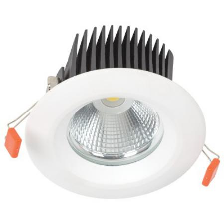 LED COB D025 20W 4000K WHITE