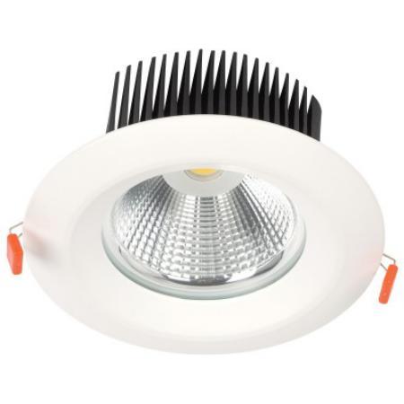 LED COB D025 30W 4000K WHITE